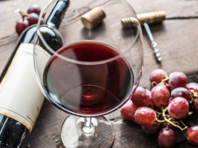 Descubre por qué es importante saber de vinos