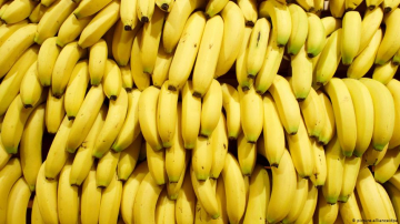 Beneficios de comer banano que debes conocer