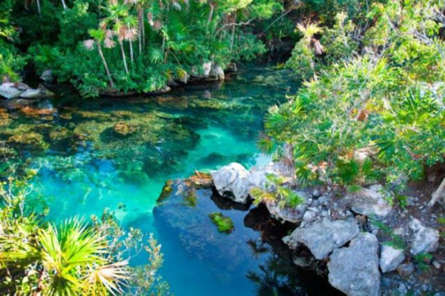 Hermosos parques naturales en México para descubrir y amar