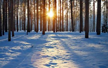 Cómo celebran en el mundo la llegada del solsticio de invierno