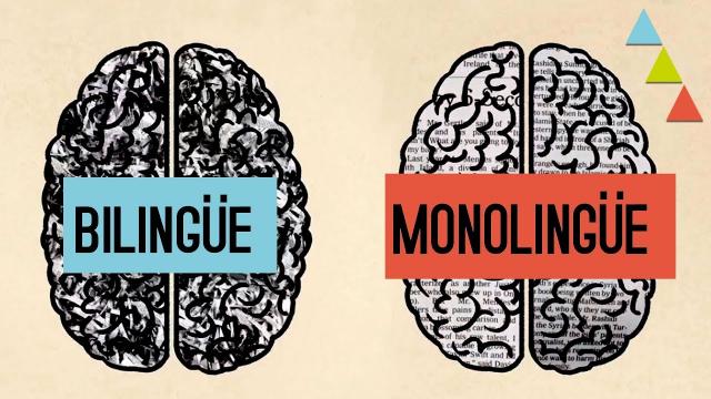 Ventajas de ser bilingüe: Motivos para aprender un nuevo idioma