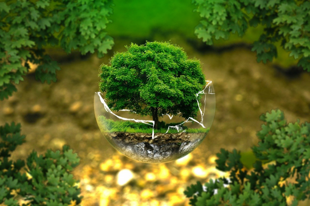 Consejos prácticos para salvar al planeta y cuidar el medio ambiente