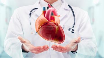 Por qué se celebra el Día de la Cardiología Argentina