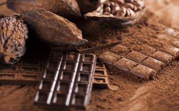 Cómo nació el Día del Chocolate Venezolano