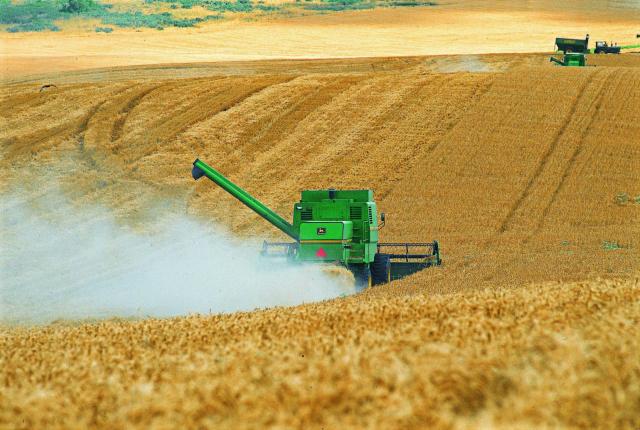 En qué consiste el Día de la Enseñanza Agropecuaria