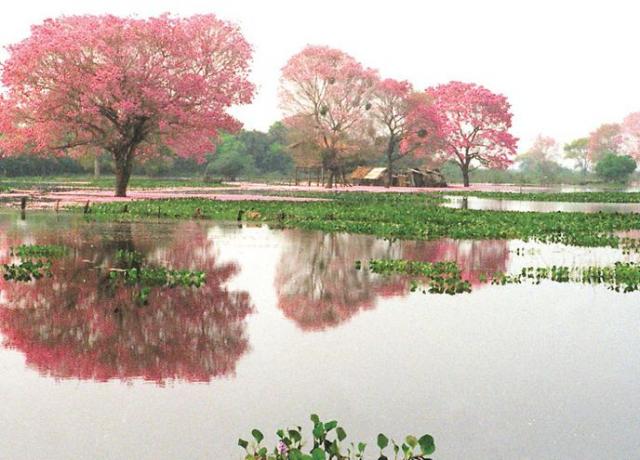 lugares más lindos de Paraguay