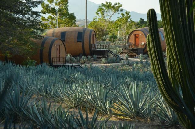 Hoteles temáticos en México